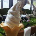さのう高原からの帰り道~温泉~ソフトクリーム