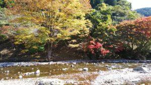 道の駅吉野路黒滝で撮った紅葉写真