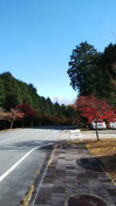 紅葉の中の富士山