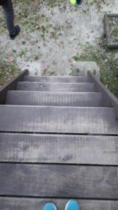 南光自然観察村のコテージの階段