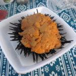 孫太郎オートキャンプで海鮮を食べつくす!