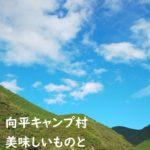向平キャンプ村日記 和歌山の美味しいものと川遊び
